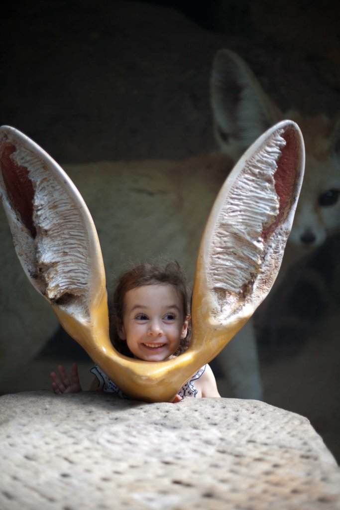 I think I have a picture of me with these Fennec Fox ears!